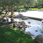 THE WILLOWS SUMMERLIN